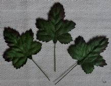 GREEN ACER LEAVES (40mm) Mulberry Paper leaves